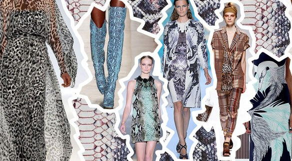 Crazy animal prints and graphics are very fashionable in 2015-2016